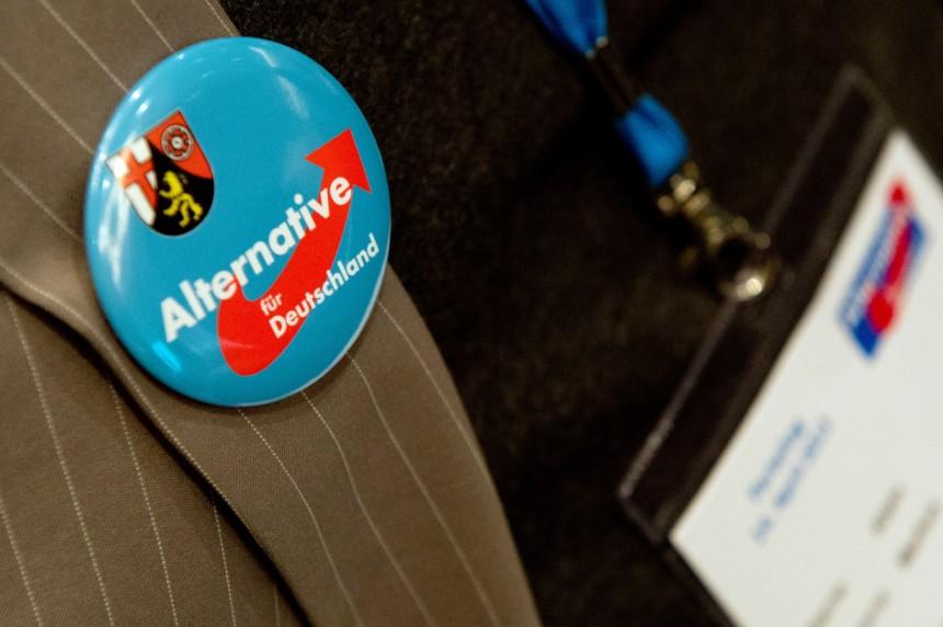 gruendungsparteitag-alternative-deutschland-afd